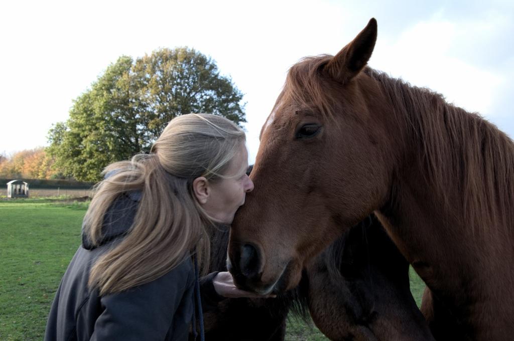 Equi-Healing, bewustzijnscoaching met behulp van paarden. Ik help jou om jouw blokkades te verwijderen en innerlijk te helen om een nieuw leven te manifesteren.